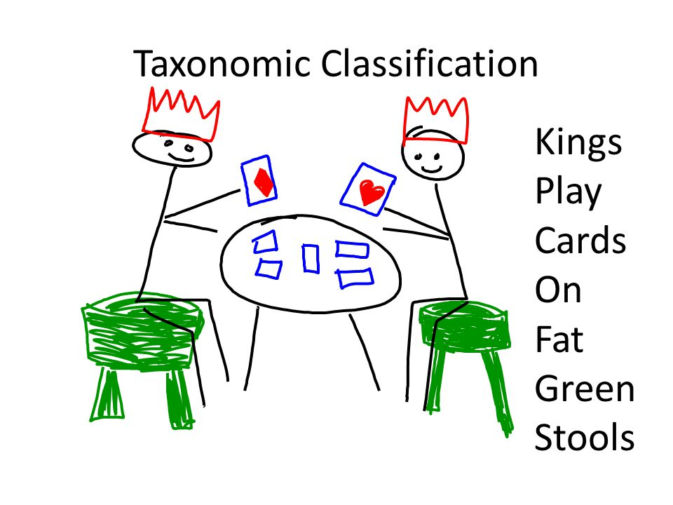 Kings Play Cards On Fat Green Stools
