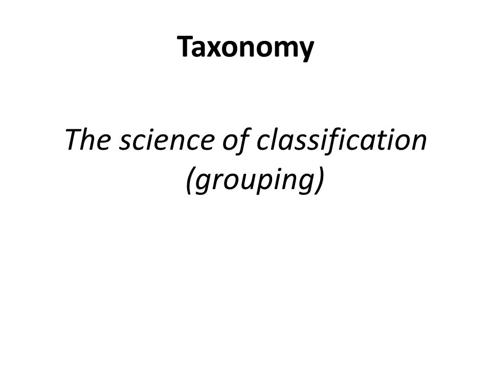 The science of classification (grouping)