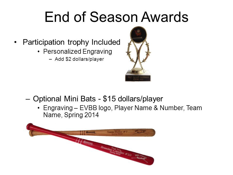 End of Season Awards Participation trophy Included Personalized Engraving –Add $2 dollars/player –Optional Mini Bats - $15 dollars/player Engraving –