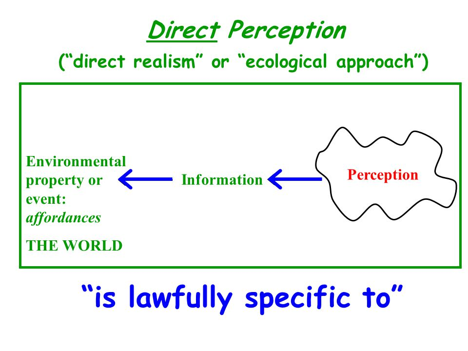 Perception Information Environmental property or event: affordances THE WORLD is lawfully specific to Direct Perception (direct realism or ecological