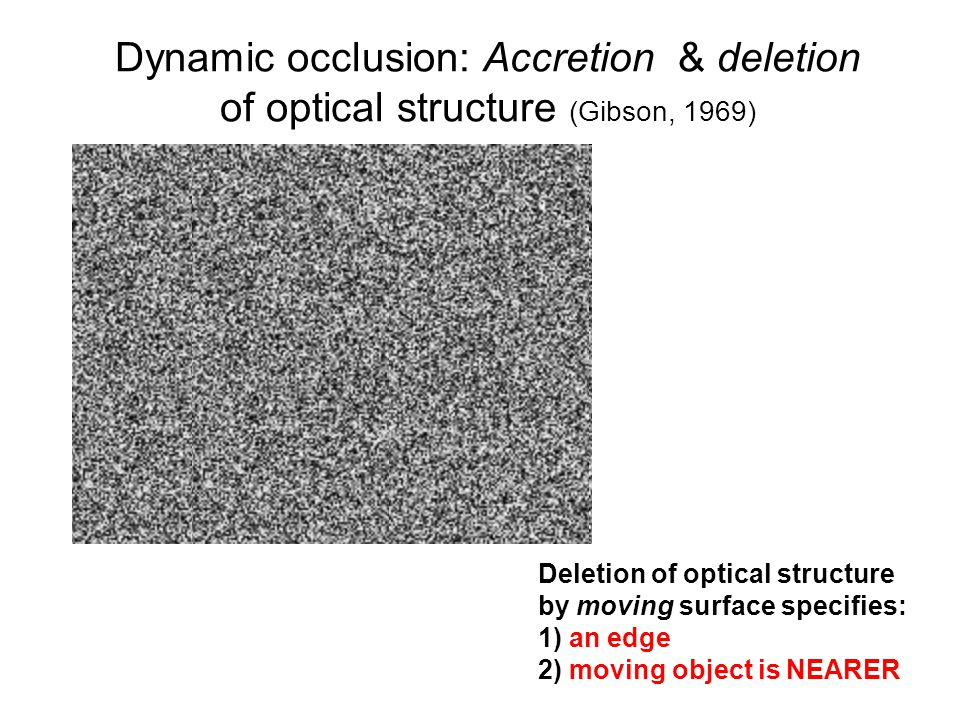 Dynamic occlusion: Accretion & deletion of optical structure (Gibson, 1969) Deletion of optical structure by moving surface specifies: 1) an edge 2) m