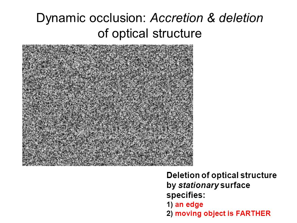 2 Deletion of optical structure by stationary surface specifies: 1) an edge 2) moving object is FARTHER Dynamic occlusion: Accretion & deletion of opt