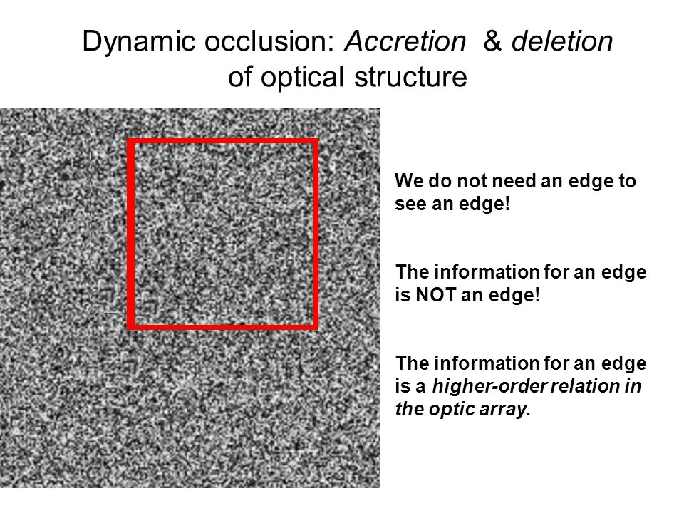Dynamic occlusion: Accretion & deletion of optical structure We do not need an edge to see an edge! The information for an edge is NOT an edge! The in
