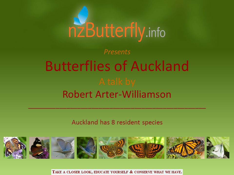 Presents Butterflies of Auckland A talk by Robert Arter-Williamson __________________________________________________ Auckland has 8 resident species