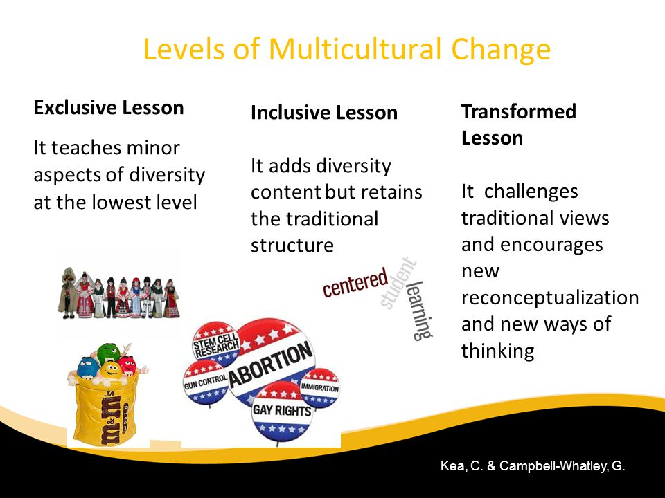 Levels of Multicultural Change Exclusive Lesson It teaches minor aspects of diversity at the lowest level 6/30/11 Inclusive Lesson It adds diversity c