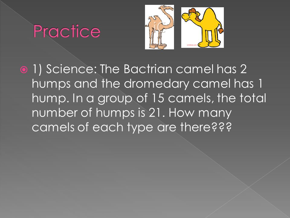 1) Science: The Bactrian camel has 2 humps and the dromedary camel has 1 hump. In a group of 15 camels, the total number of humps is 21. How many came