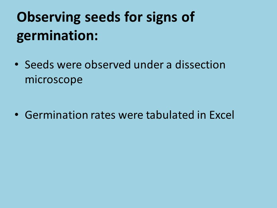 Observing seeds for signs of germination: Seeds were observed under a dissection microscope Germination rates were tabulated in Excel