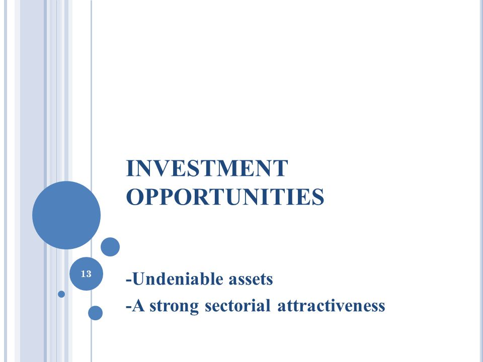 INVESTMENT OPPORTUNITIES -Undeniable assets -A strong sectorial attractiveness 13