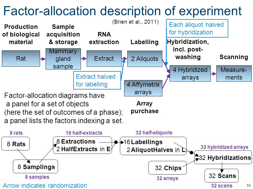 Factor-allocation description of experiment (Brien et al., 2011) 10 Production of biological material Rat Array purchase 4 Affymetrix arrays Labelling 2 Aliquots RNA extraction Extract Sample acquisition & storage Mammary gland sample Hybridization, incl.