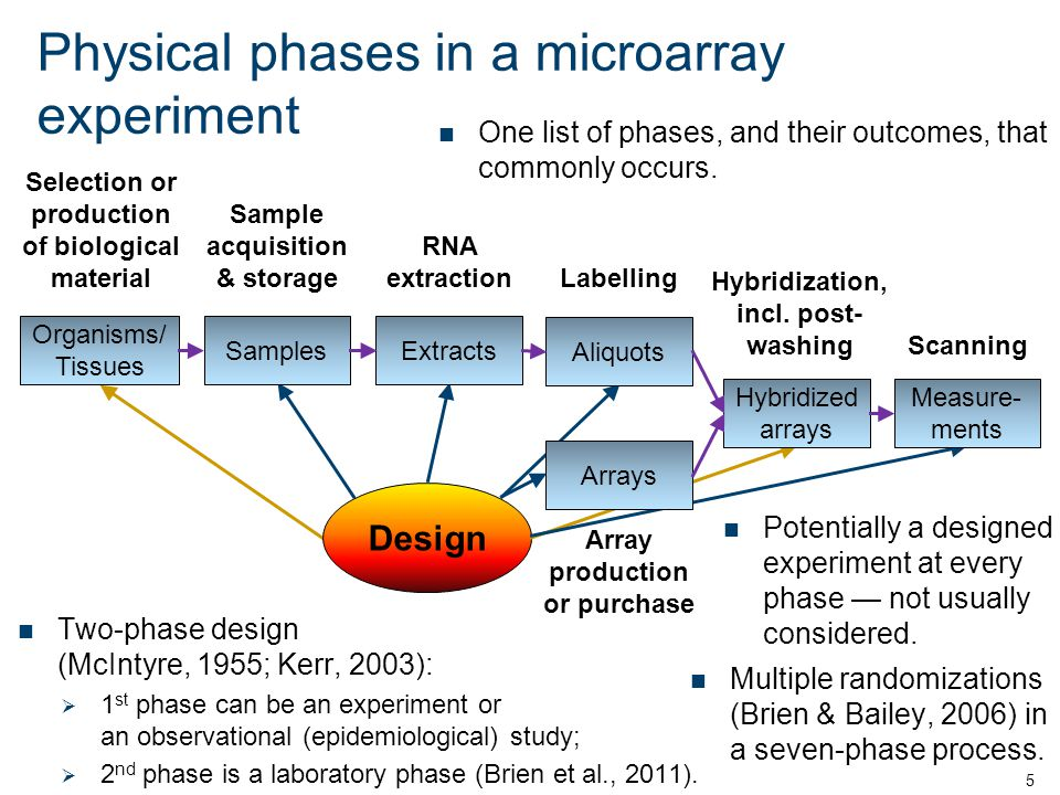 Physical phases in a microarray experiment One list of phases, and their outcomes, that commonly occurs.