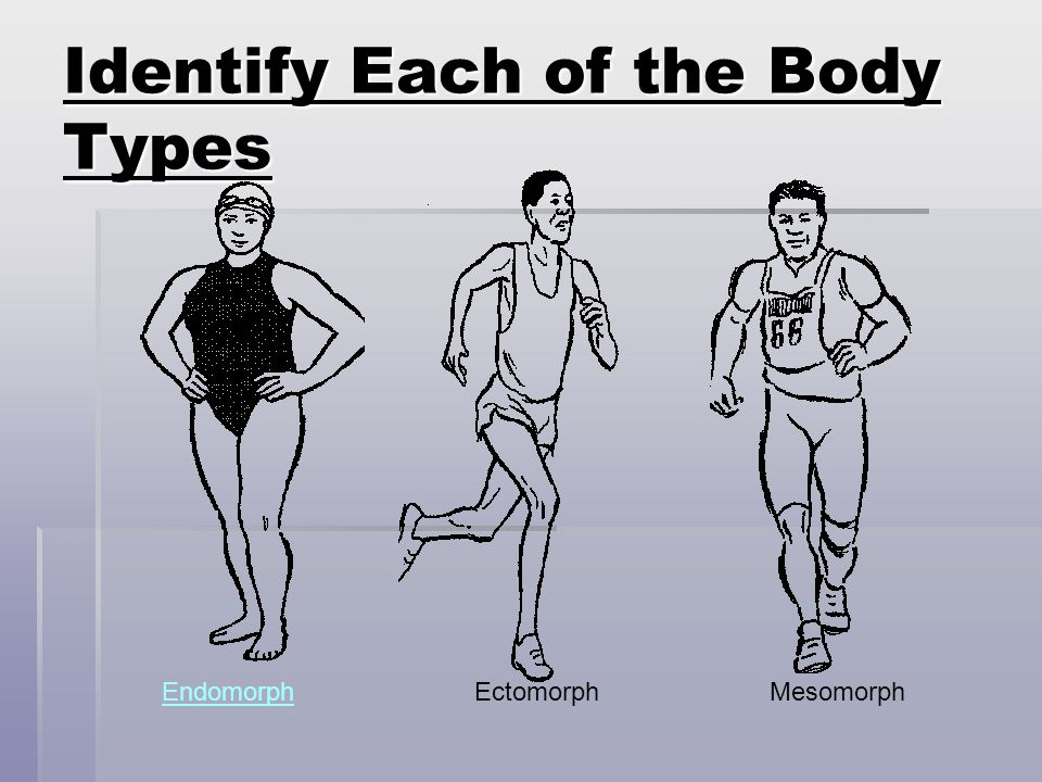 BODY TYPES MESOMORPH MESOMORPH Carries a large amount of muscle. Carries a large amount of muscle. People with this body type look athletic. People wi