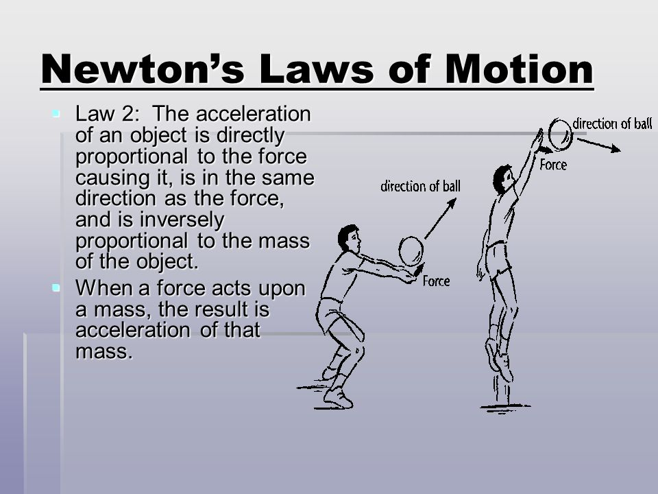 Newtons Laws of Motion Newtons 1 st Law illustrated. Newtons 1 st Law illustrated.