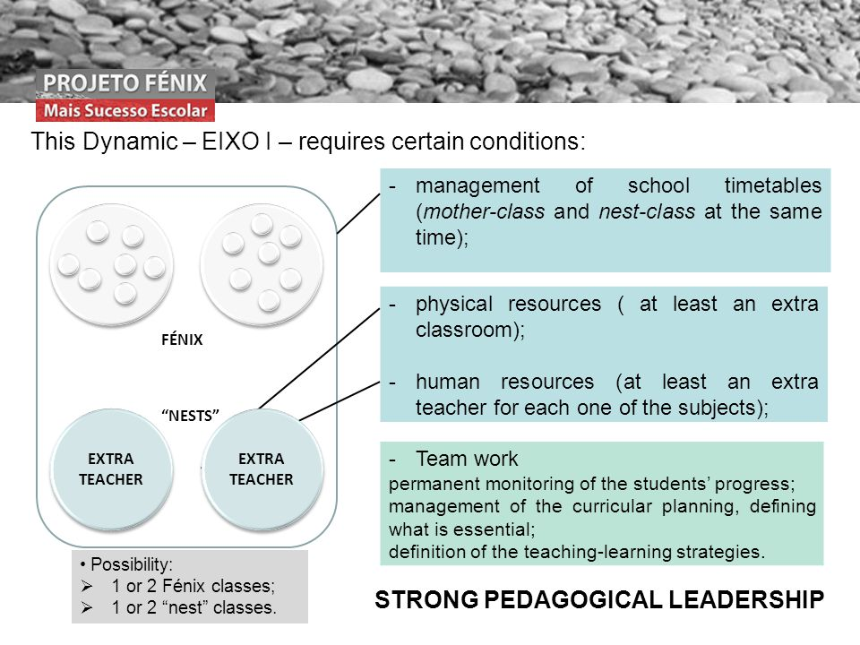 This Dynamic – EIXO I – requires certain conditions: FÉNIX NESTS -management of school timetables (mother-class and nest-class at the same time); -physical resources ( at least an extra classroom); -human resources (at least an extra teacher for each one of the subjects); EXTRA TEACHER -Team work permanent monitoring of the students progress; management of the curricular planning, defining what is essential; definition of the teaching-learning strategies.