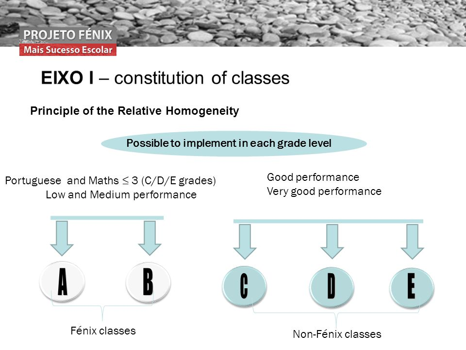 Possible to implement in each grade level Portuguese and Maths 3 (C/D/E grades) Low and Medium performance Good performance Very good performance Principle of the Relative Homogeneity Fénix classes Non-Fénix classes
