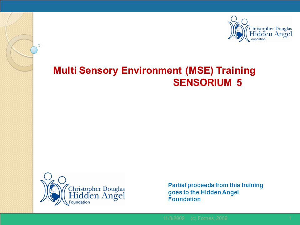Partial proceeds from this training goes to the Hidden Angel Foundation Multi Sensory Environment (MSE) Training SENSORIUM 5 11/8/20091(c) Fornes, 2009