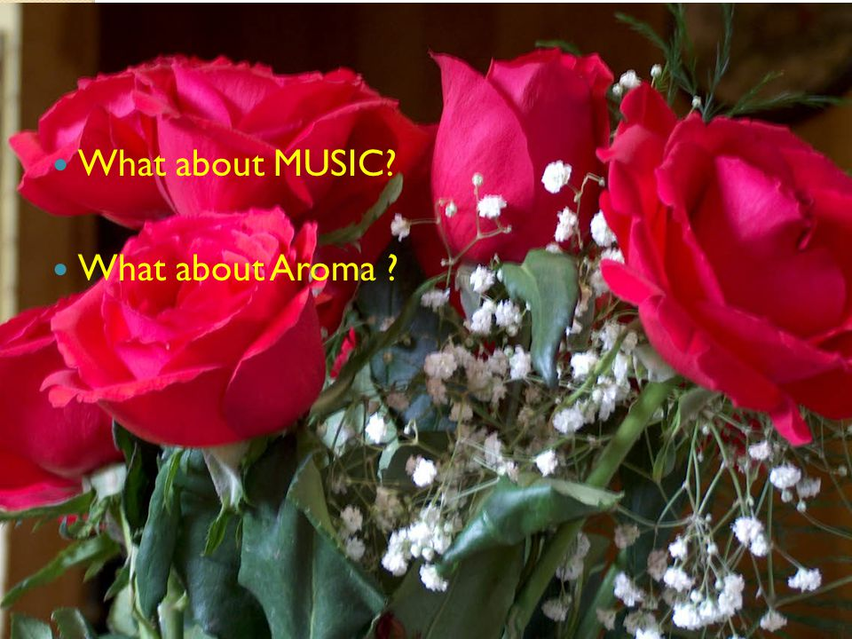 What about MUSIC What about Aroma