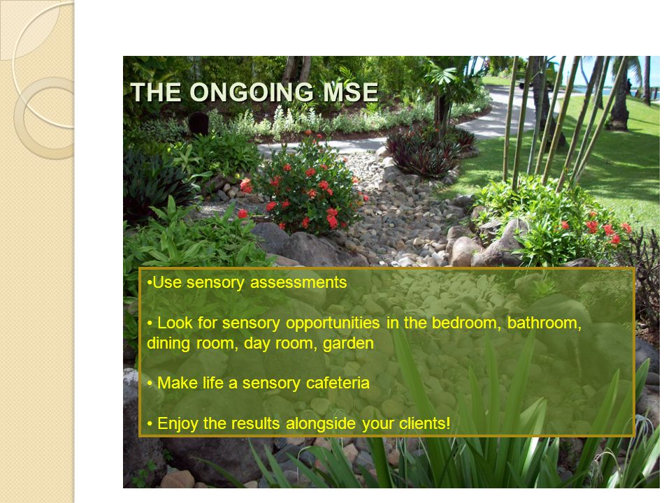 Use sensory assessments Look for sensory opportunities in the bedroom, bathroom, dining room, day room, garden Make life a sensory cafeteria Enjoy the results alongside your clients.