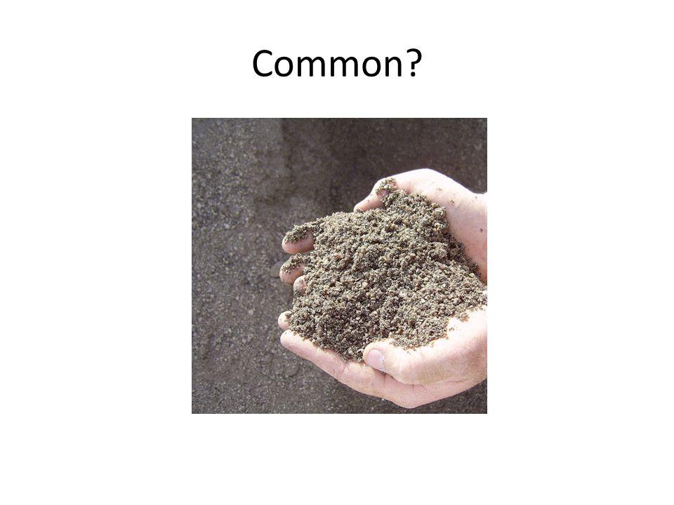 Common?