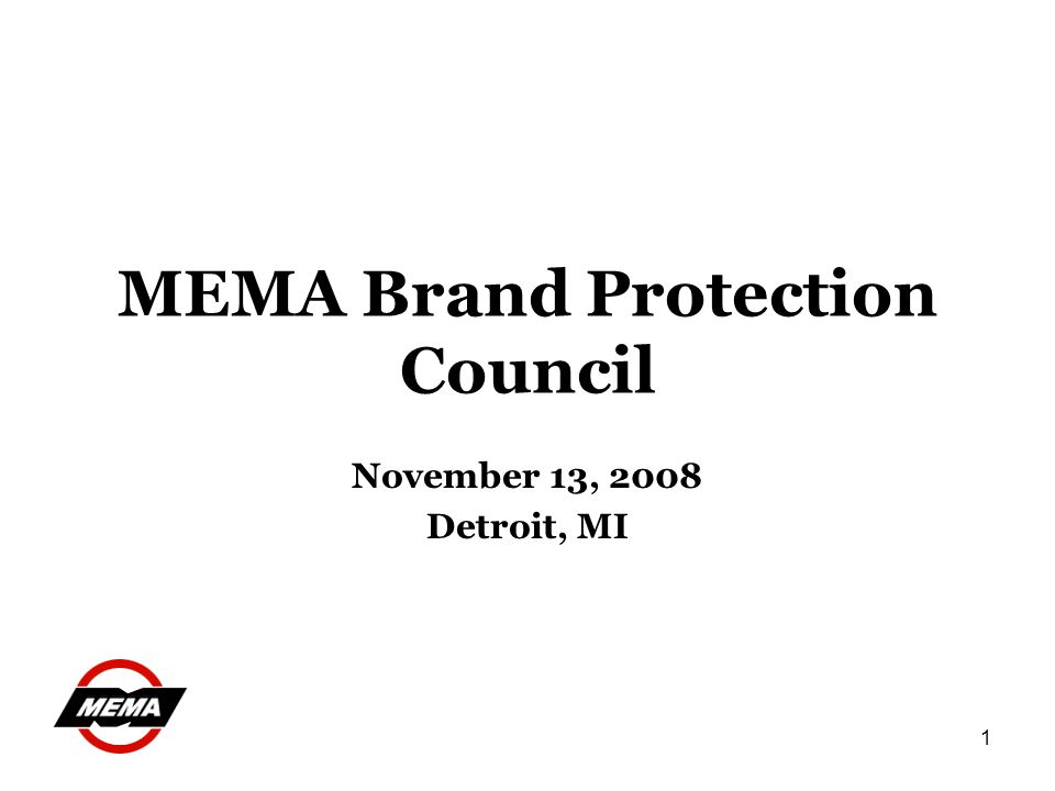 1 MEMA Brand Protection Council November 13, 2008 Detroit, MI