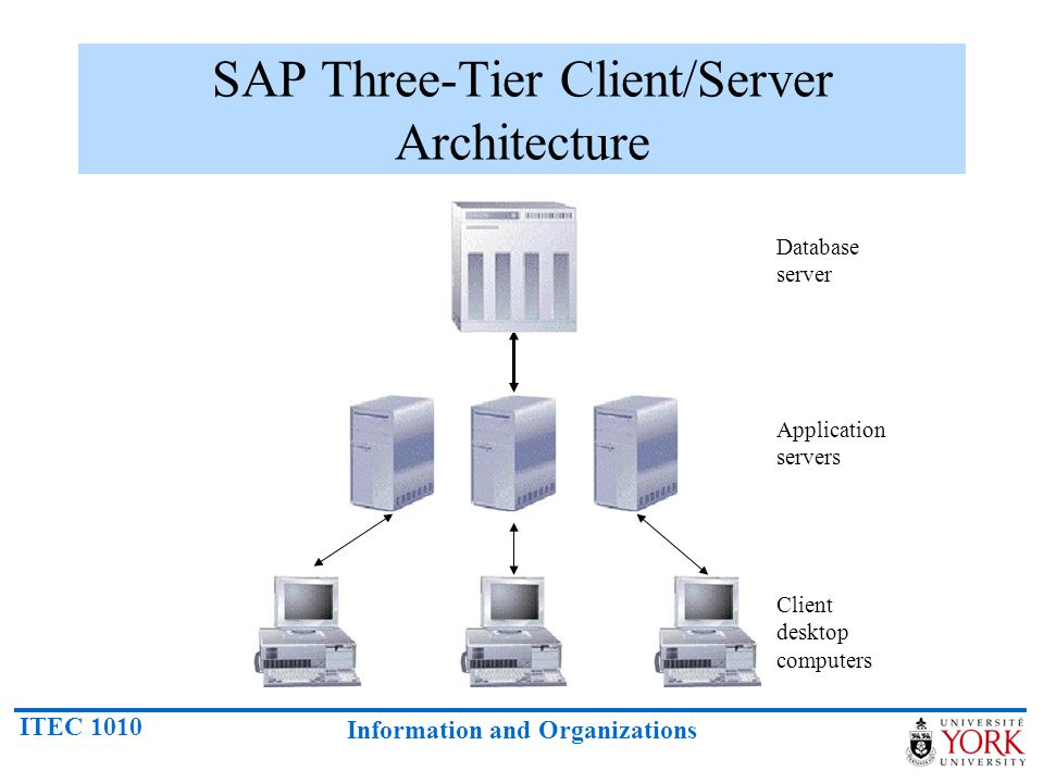 ITEC 1010 Information and Organizations SAP Three-Tier Client/Server Architecture Client desktop computers Application servers Database server