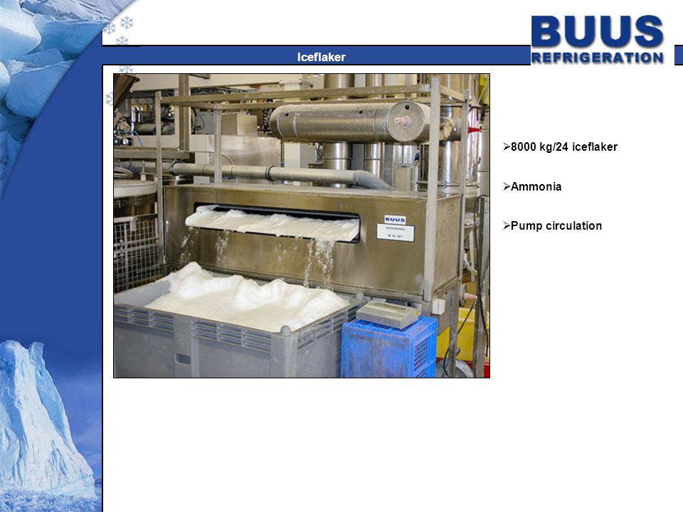 8000 kg/24 iceflaker Ammonia Pump circulation Iceflaker