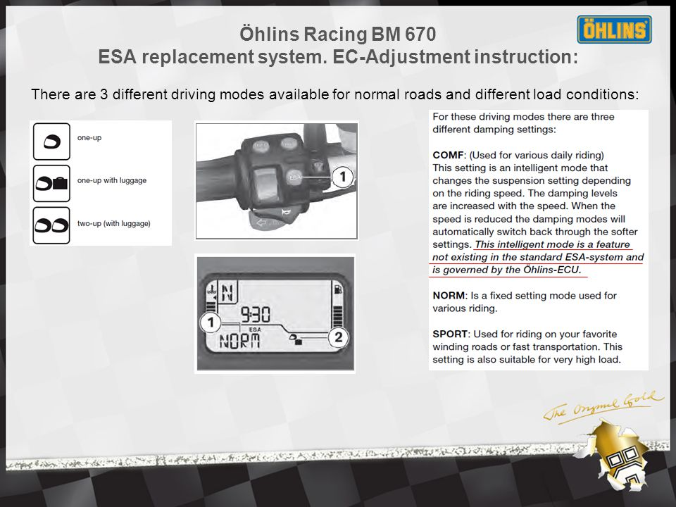 Öhlins Racing BM 670 ESA replacement system.