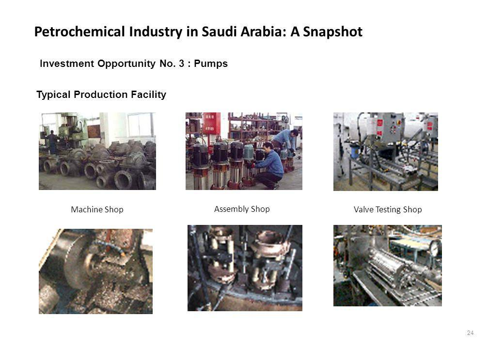 Petrochemical Industry in Saudi Arabia: A Snapshot 24 Typical Production Facility Machine Shop Assembly Shop Valve Testing Shop Investment Opportunity