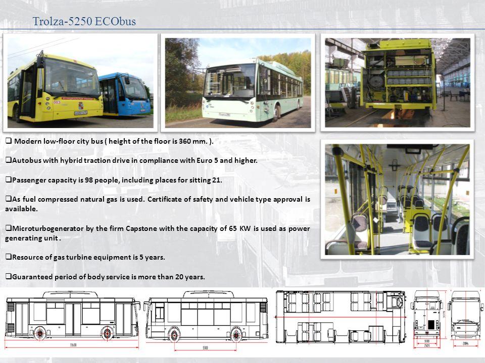 Modern low-floor city bus ( height of the floor is 360 mm.