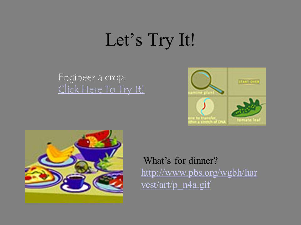 Lets Try It! Whats for dinner? http://www.pbs.org/wgbh/har vest/art/p_n4a.gif http://www.pbs.org/wgbh/har vest/art/p_n4a.gif Engineer a crop: Click He