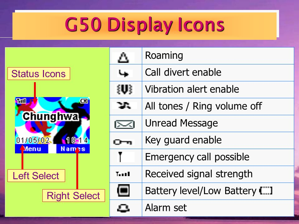G50 Display Icons Roaming Call divert enable Vibration alert enable All tones / Ring volume off Unread Message Key guard enable Emergency call possible Received signal strength Battery level/Low Battery Alarm set Status Icons Main Display Left Select Right Select