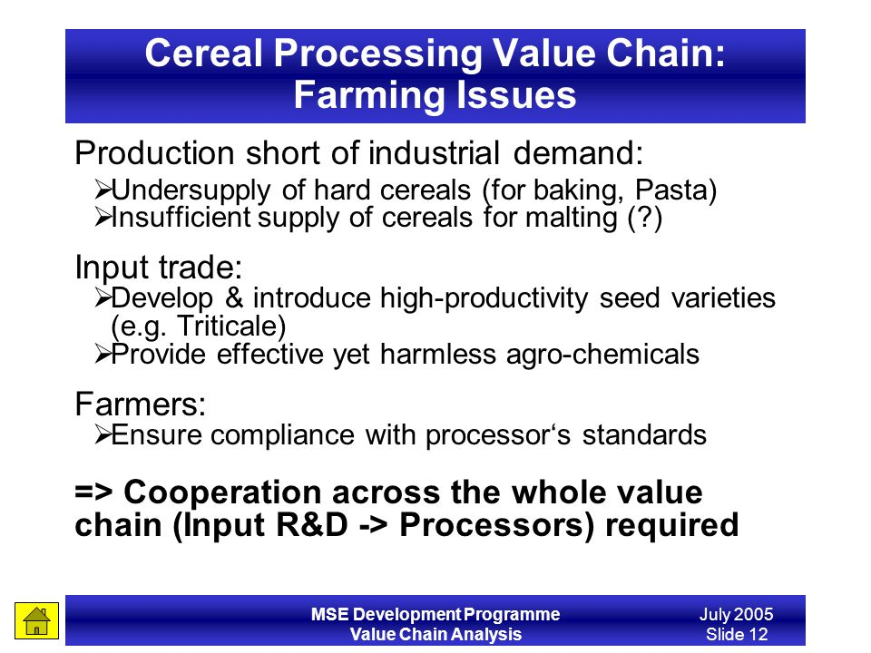 MSE Development Programme Value Chain Analysis July 2005 Slide 12 Cereal Processing Value Chain: Farming Issues Production short of industrial demand: