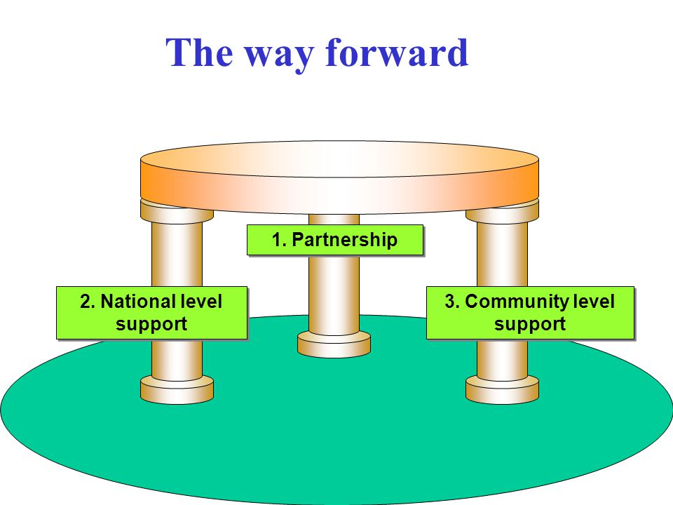2. National level support 1. Partnership 3. Community level support The way forward