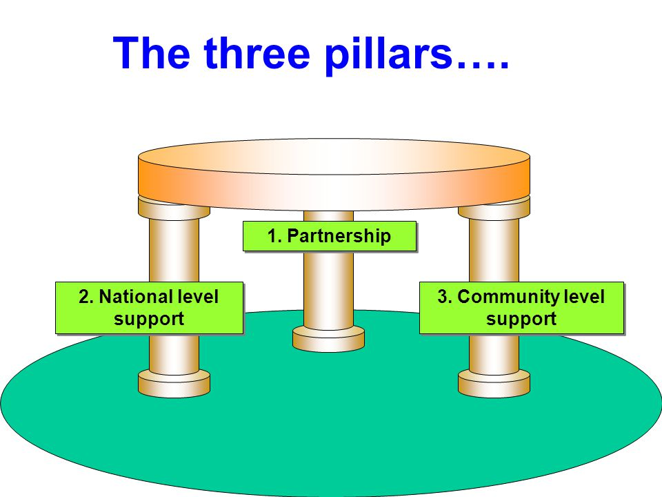 2. National level support 1. Partnership 3. Community level support The three pillars….