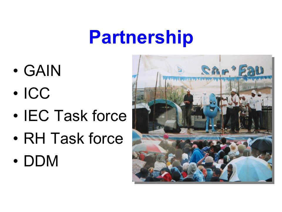 Partnership GAIN ICC IEC Task force RH Task force DDM