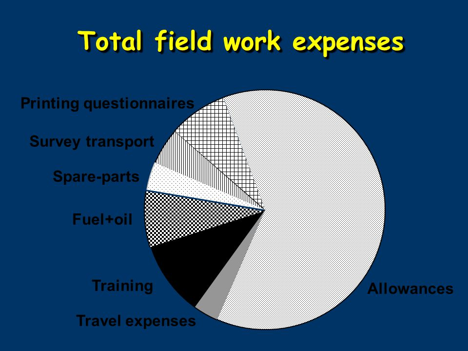 Allowances Training Travel expenses Fuel+oil Spare-parts Survey transport Printing questionnaires Total field work expenses