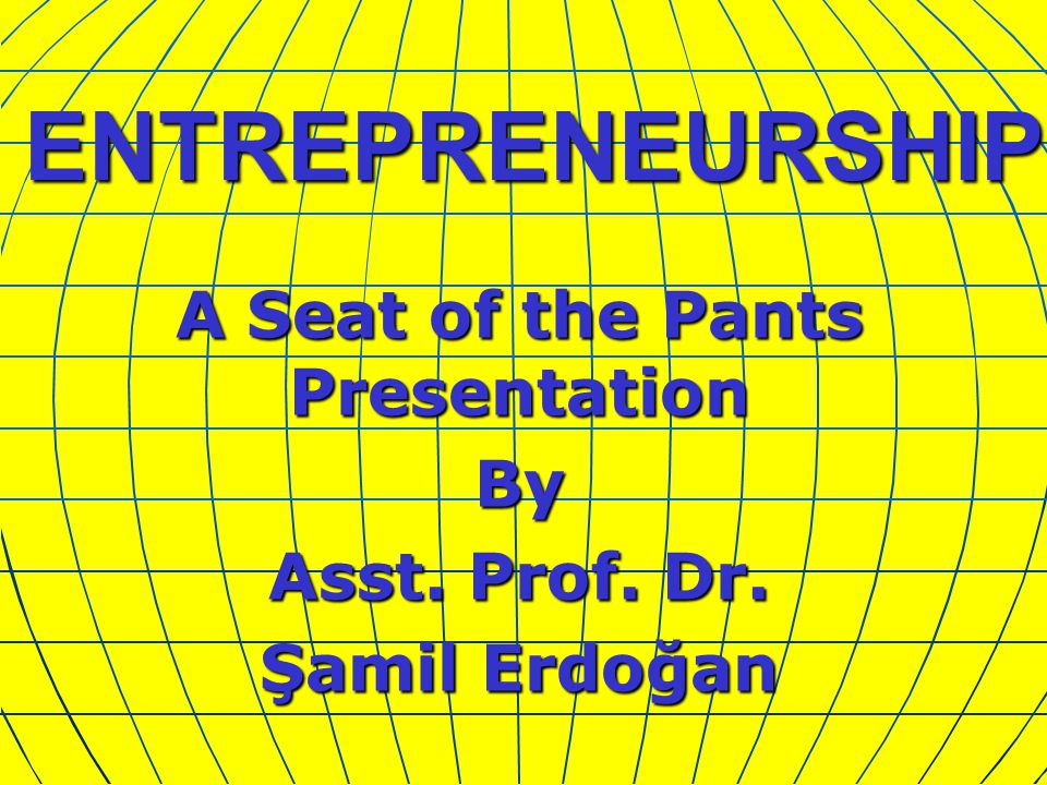 ENTREPRENEURSHIP A Seat of the Pants Presentation By Asst. Prof. Dr. Şamil Erdoğan