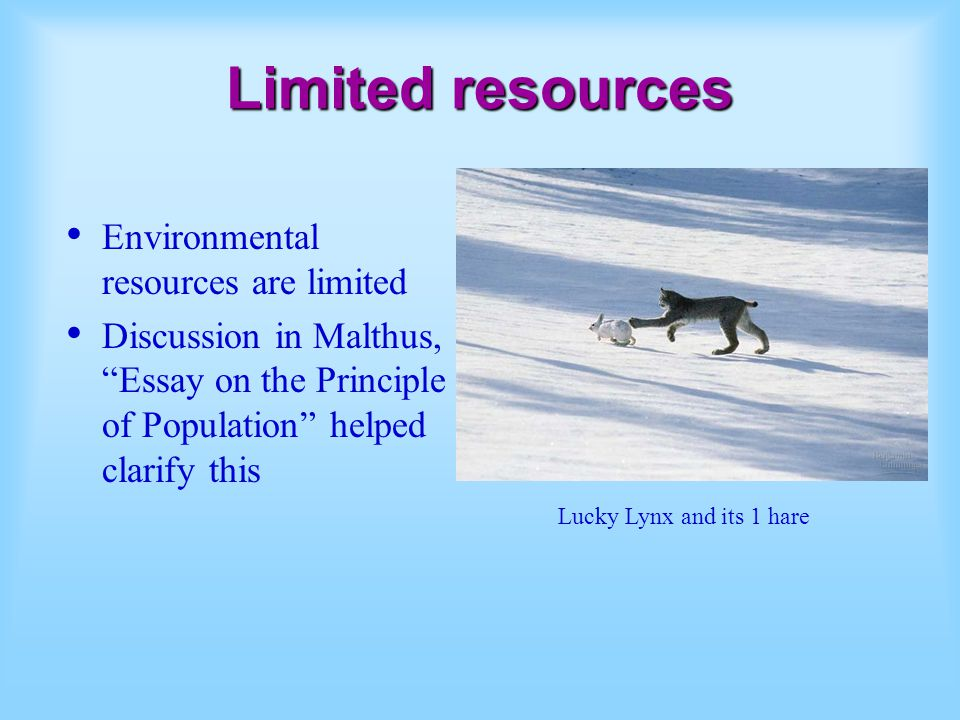 Limited resources Environmental resources are limited Discussion in Malthus, Essay on the Principle of Population helped clarify this Lucky Lynx and i