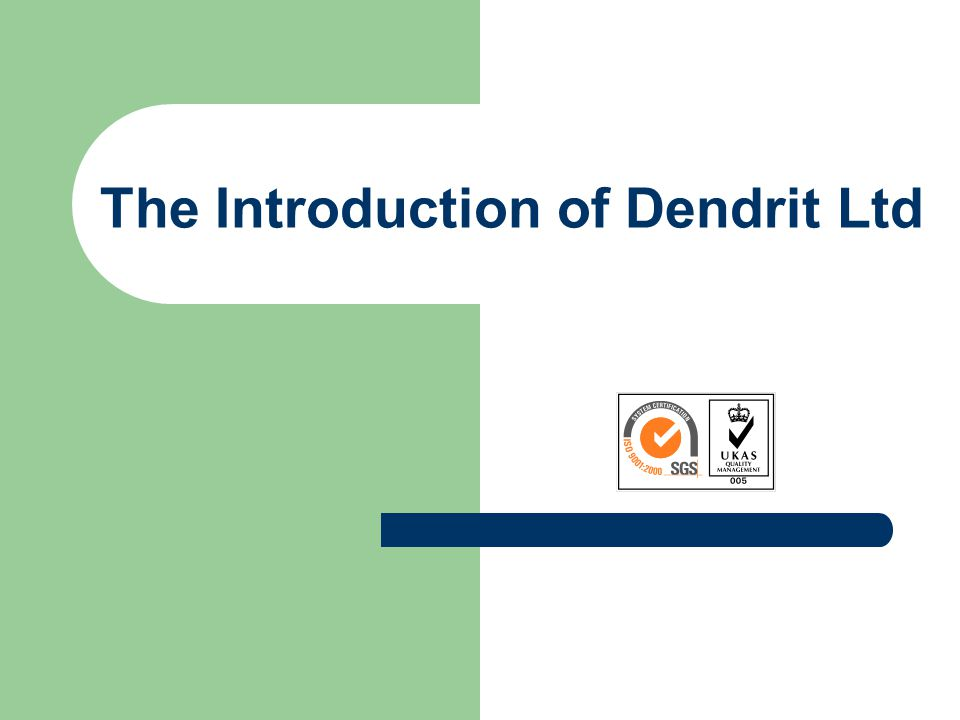 The Introduction of Dendrit Ltd