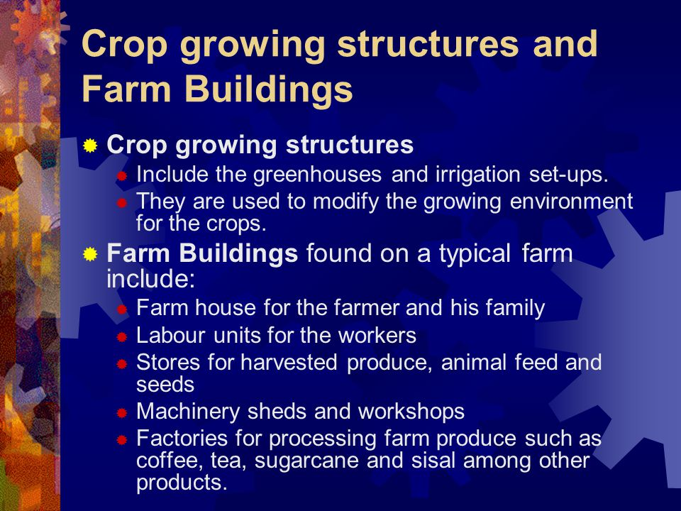 Crop growing structures and Farm Buildings Crop growing structures Include the greenhouses and irrigation set-ups. They are used to modify the growing