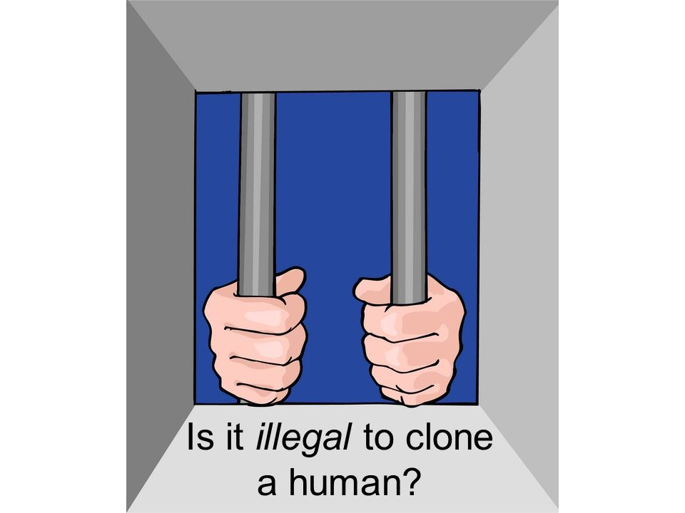 Is it illegal to clone a human?