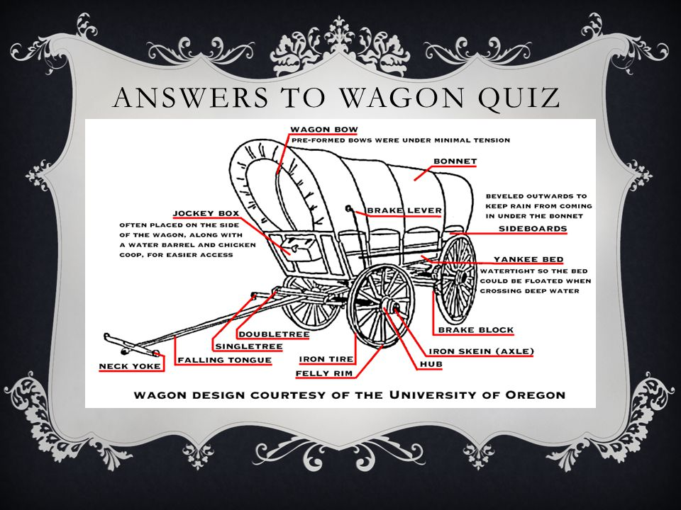ANSWERS TO WAGON QUIZ