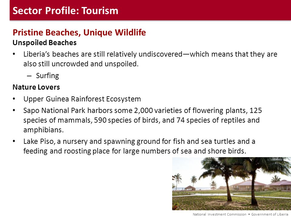 Sector Profile: Tourism Pristine Beaches, Unique Wildlife Unspoiled Beaches Liberias beaches are still relatively undiscoveredwhich means that they ar
