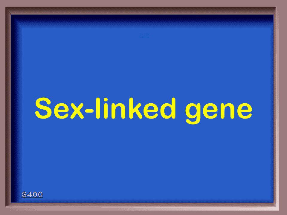 1-400 An allele inherited on a sex chromosome.