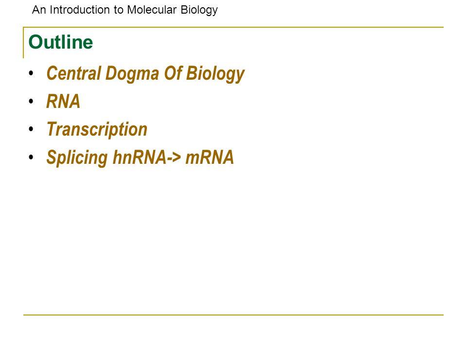 An Introduction to Molecular Biology Outline Central Dogma Of Biology RNA Transcription Splicing hnRNA-> mRNA