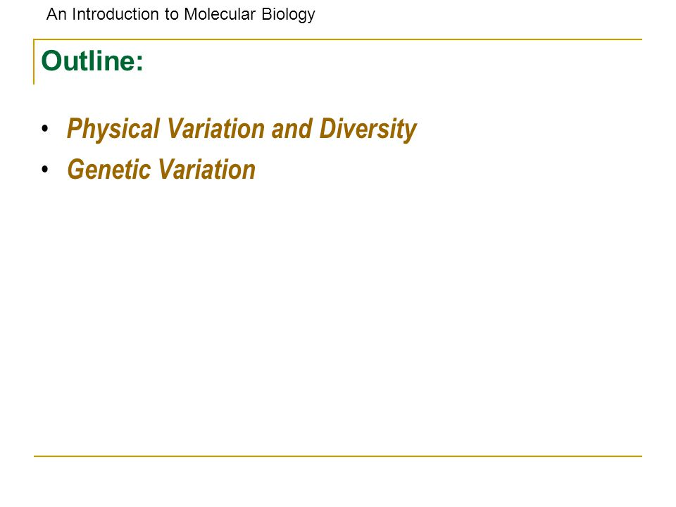 An Introduction to Molecular Biology Outline: Physical Variation and Diversity Genetic Variation