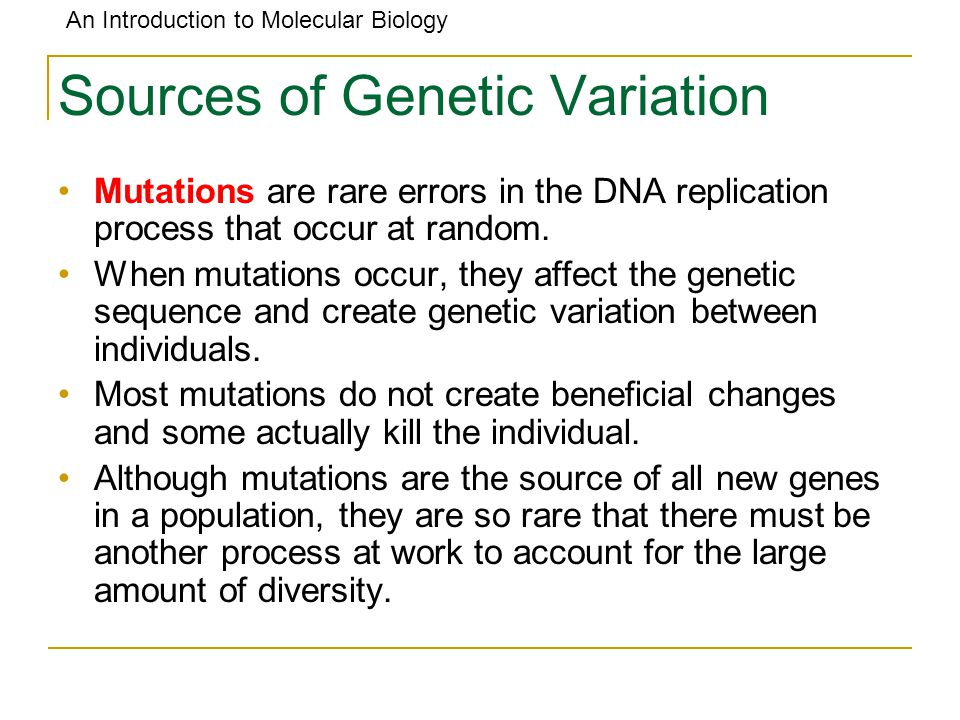 An Introduction to Molecular Biology Sources of Genetic Variation Mutations are rare errors in the DNA replication process that occur at random. When