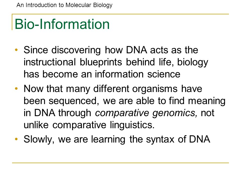 An Introduction to Molecular Biology Bio-Information Since discovering how DNA acts as the instructional blueprints behind life, biology has become an