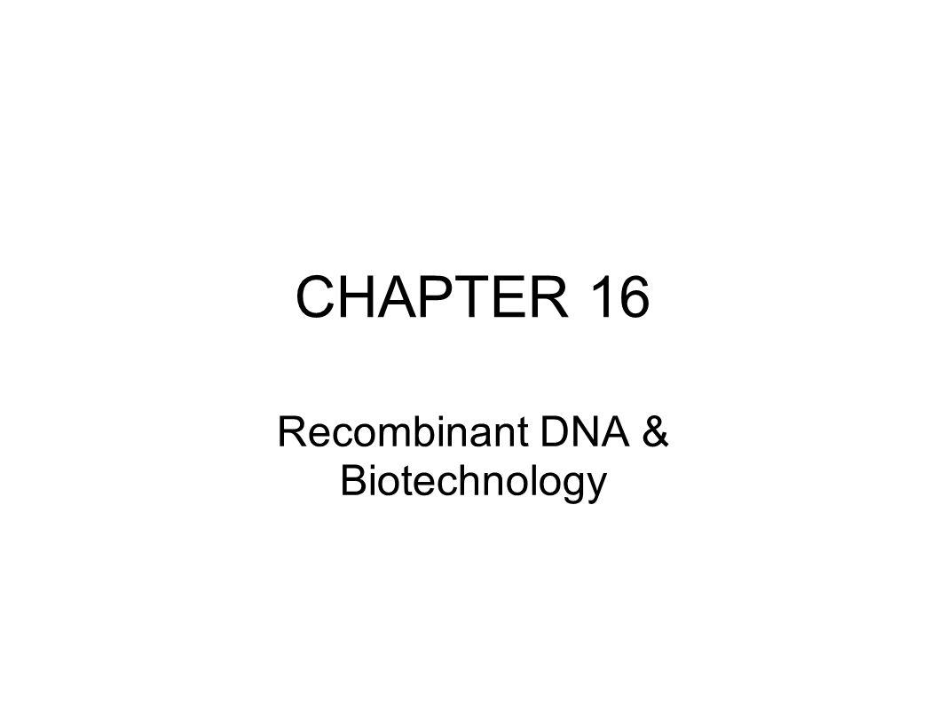 CHAPTER 16 Recombinant DNA & Biotechnology