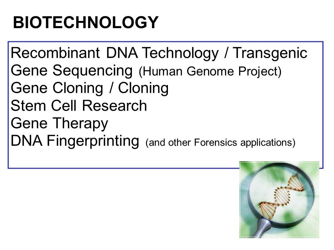 Recombinant DNA Technology / Transgenic Gene Sequencing (Human Genome Project) Gene Cloning / Cloning Stem Cell Research Gene Therapy DNA Fingerprinti