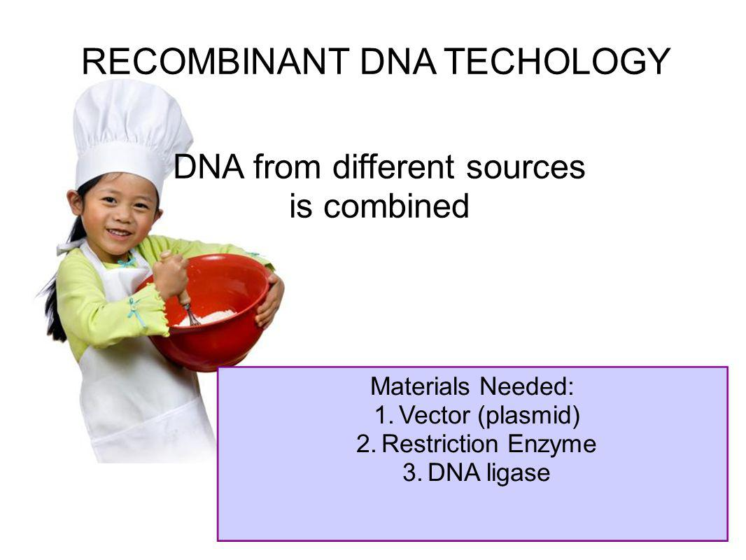 RECOMBINANT DNA TECHOLOGY DNA from different sources is combined Materials Needed: 1.Vector (plasmid) 2.Restriction Enzyme 3.DNA ligase